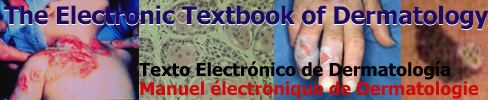 Logo for The Electronic Textbook of Dermatology