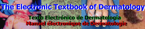 Electronic Textbook of Dermatology